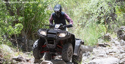 2016 Honda FourTrax Foreman Rubicon 4x4 Automatic DCT EPS Deluxe in Middlesboro, Kentucky