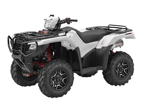 2016 Honda FourTrax Foreman Rubicon 4x4 Automatic DCT EPS Deluxe in North Reading, Massachusetts