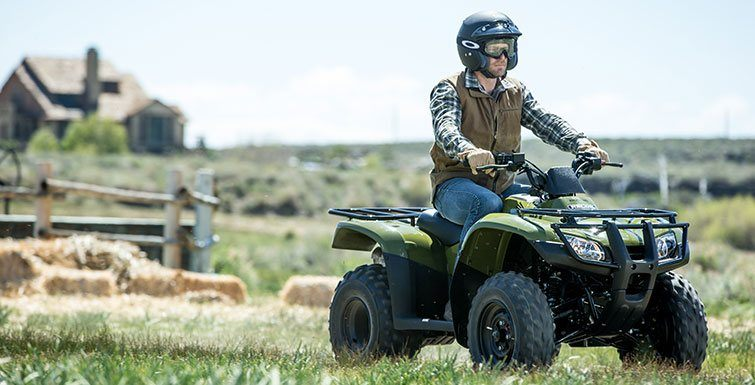 2016 Honda FourTrax Recon in Carson, California