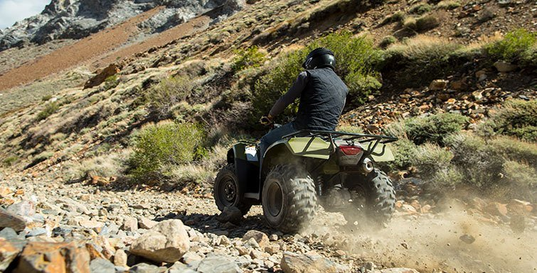 2016 Honda FourTrax Rincon in Huntington Beach, California