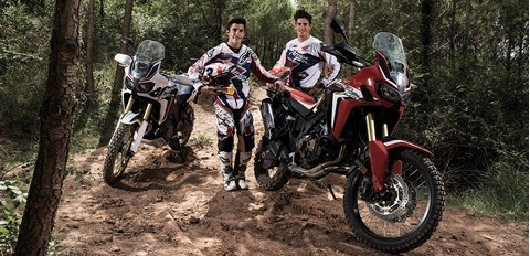 2016 Honda Africa Twin in Hudson, Florida