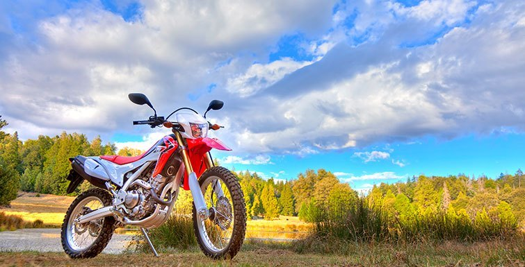 2016 Honda CRF250L in Massillon, Ohio