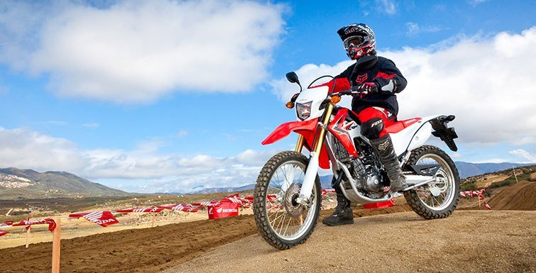 2016 Honda CRF250L in Hamburg, New York