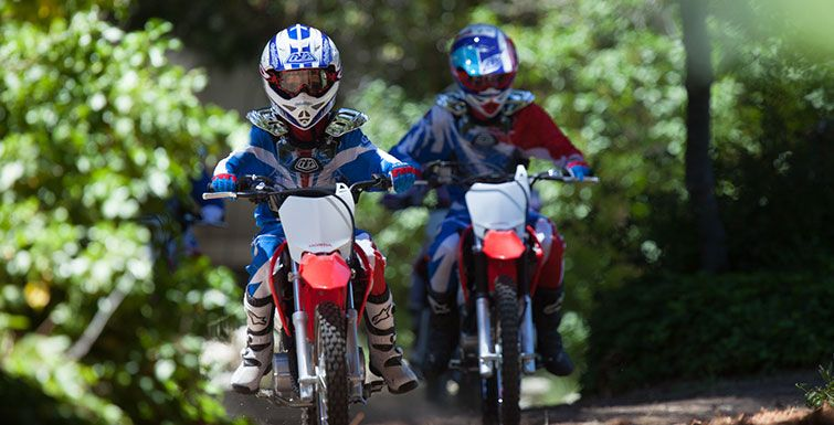 2016 Honda CRF110F in Grass Valley, California