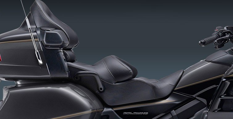 2016 Honda Gold Wing Airbag in Hendersonville, North Carolina