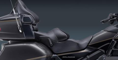 2016 Honda Gold Wing Airbag in Troy, Ohio