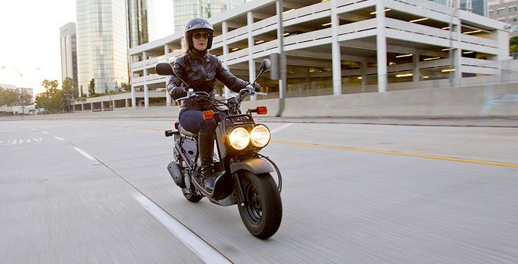 2016 Honda Ruckus in Chattanooga, Tennessee
