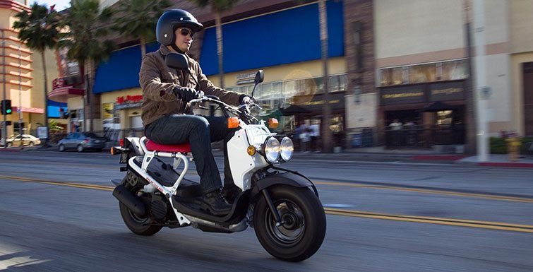 2016 Honda Ruckus in San Francisco, California - Photo 5