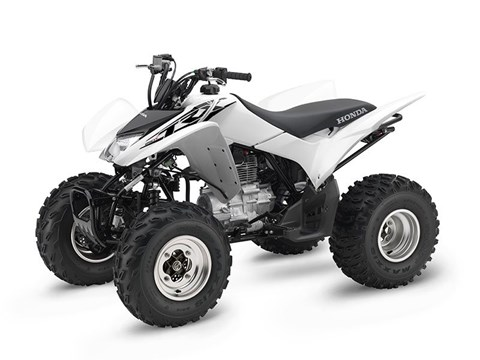 2017 Honda TRX250X in Beckley, West Virginia