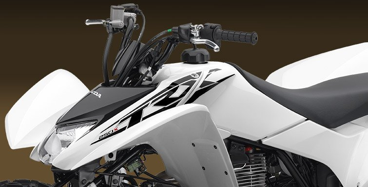 2017 Honda TRX250X in Middlesboro, Kentucky