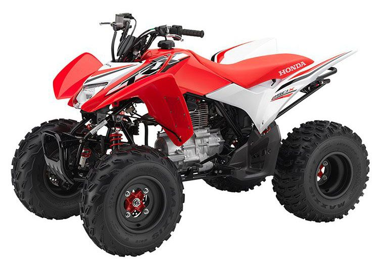 2017 Honda TRX250X Special Edition in Arlington, Texas