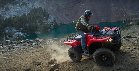 2017 Honda FourTrax Foreman 4x4 in Delano, California
