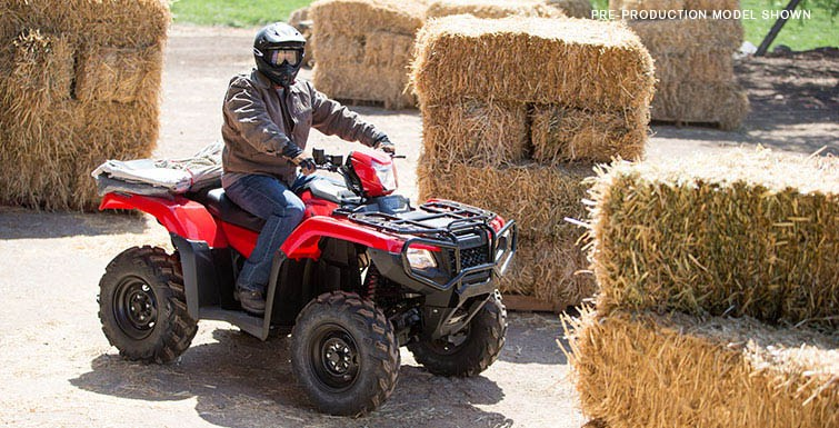 2017 Honda FourTrax Foreman Rubicon 4x4 DCT in Belle Plaine, Minnesota