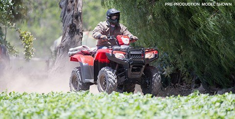2017 Honda FourTrax Foreman Rubicon 4x4 DCT in Hudson, Florida