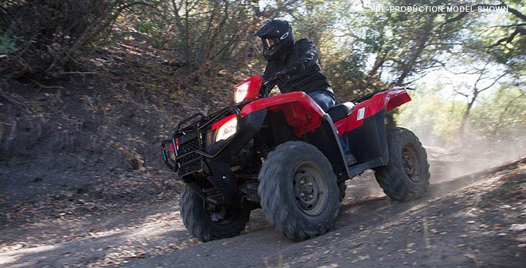 2017 Honda FourTrax Foreman Rubicon 4x4 DCT in Adams, Massachusetts