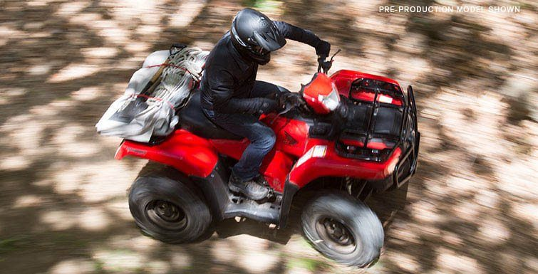 2017 Honda FourTrax Foreman Rubicon 4x4 EPS in Amherst, Ohio