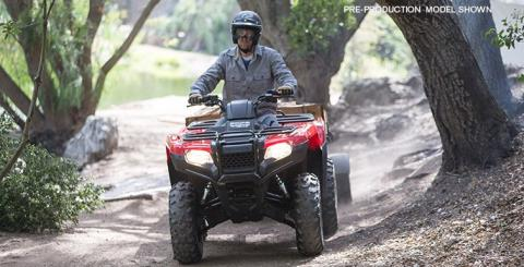 2017 Honda FourTrax Rancher 4x4 DCT IRS in Lakeport, California