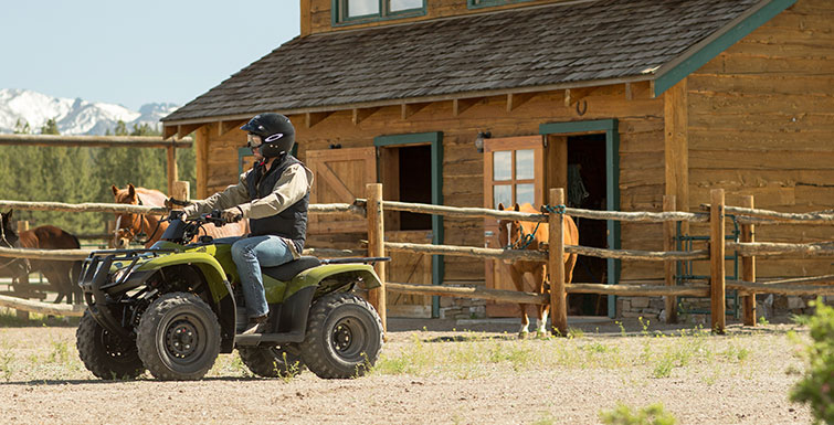 2017 Honda FourTrax Recon in Lapeer, Michigan