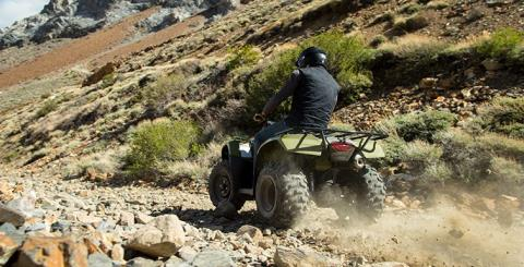 2017 Honda FourTrax Recon in Delano, California