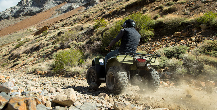 2017 Honda FourTrax Recon ES in Hollister, California