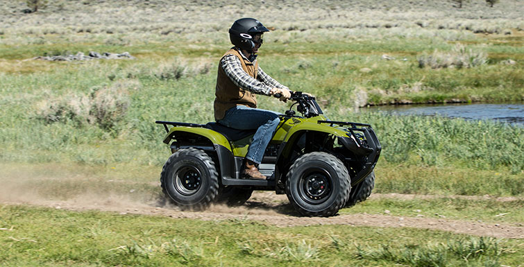 2017 Honda FourTrax Recon ES in Adams, Massachusetts