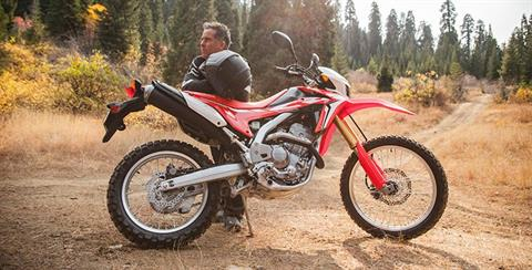 2017 Honda CRF250L in Phillipston, Massachusetts