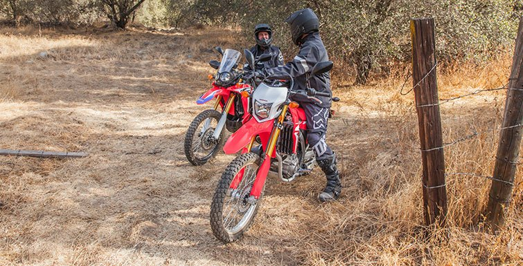 2017 Honda CRF250L Rally in Berkeley, California - Photo 3