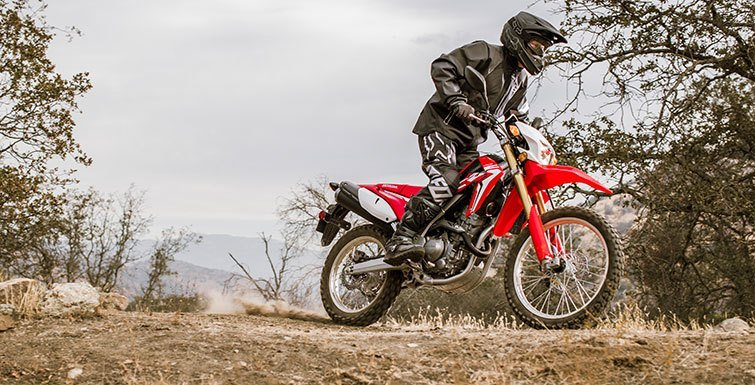 2017 Honda CRF250L Rally in Prosperity, Pennsylvania