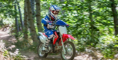 2017 Honda CRF110F in Troy, Ohio