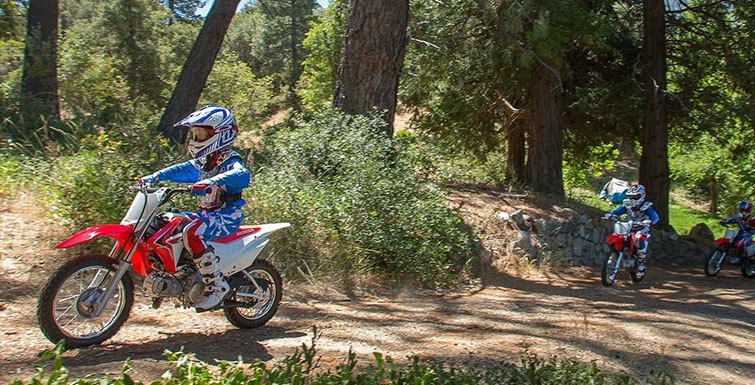 2017 Honda CRF110F in Redding, California