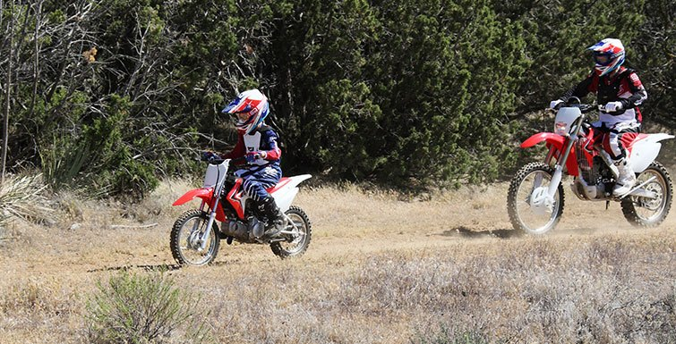 2017 Honda CRF110F in Fairfield, Illinois
