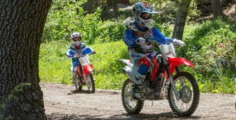 2017 Honda CRF125F in Warren, Michigan