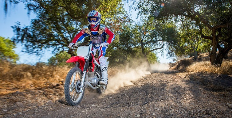 2017 Honda CRF150F in Wichita Falls, Texas