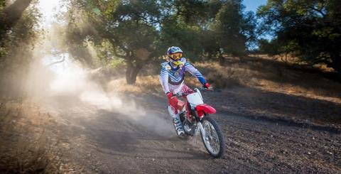 2017 Honda CRF230F in Paw Paw, Michigan