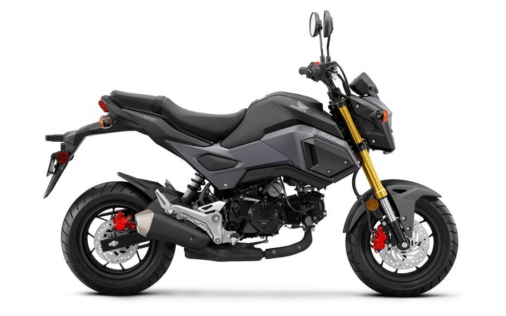 2017 Honda Grom in Berkeley, California - Photo 1