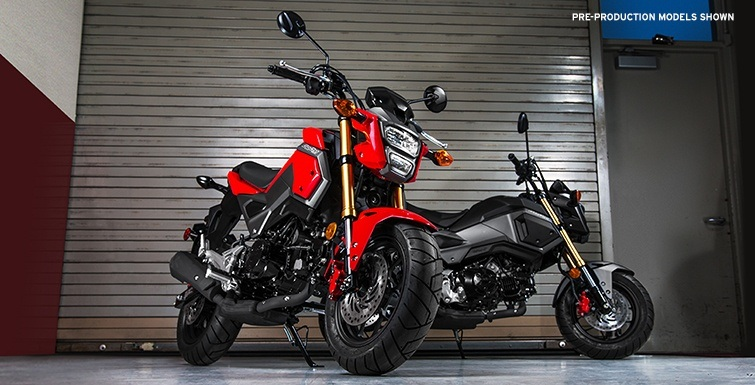 2017 Honda Grom in Lapeer, Michigan