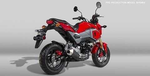 2017 Honda Grom in Littleton, New Hampshire