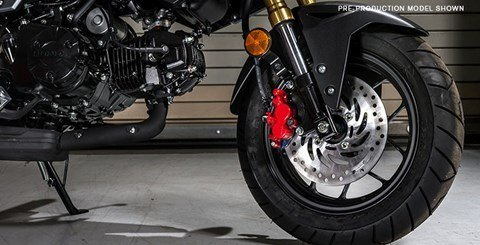 2017 Honda Grom in Hendersonville, North Carolina