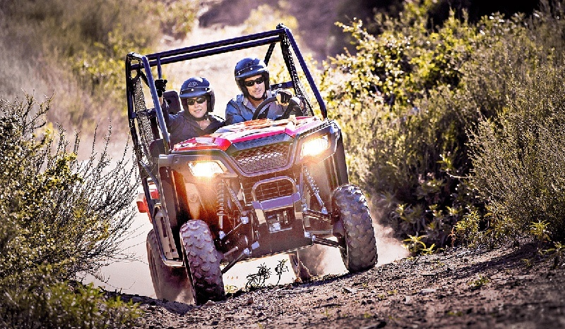 2017 Honda Pioneer 500 in Kingman, Arizona