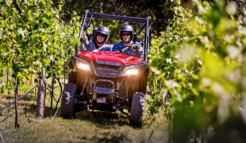 2017 Honda Pioneer 500 in Palatine Bridge, New York