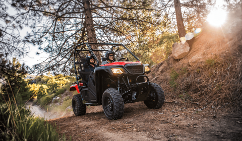 2017 Honda Pioneer 500 in Fairfield, Illinois