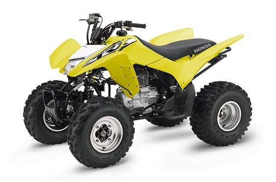 2018 Honda TRX250X in Irvine, California