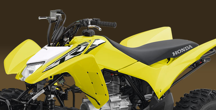2018 Honda TRX250X in Danbury, Connecticut