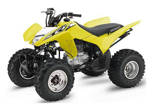 2018 Honda TRX250X in West Bridgewater, Massachusetts