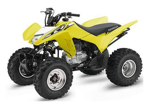 2018 Honda TRX250X in Watseka, Illinois