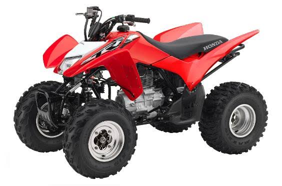 2018 Honda TRX250X in Winchester, Tennessee - Photo 1