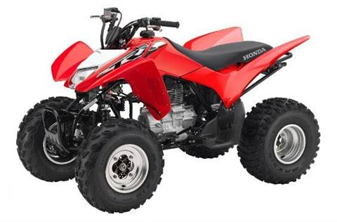 2018 Honda TRX250X in Amherst, Ohio - Photo 1