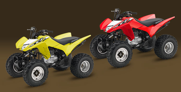 2018 Honda TRX250X in Hollister, California