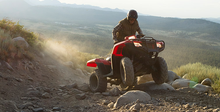 2018 Honda FourTrax Foreman 4x4 in Grass Valley, California