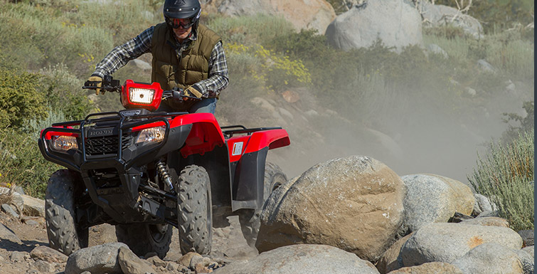 2018 Honda FourTrax Foreman 4x4 in Gridley, California